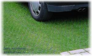 Зелёная лужайка во дворе на основе газонной решётки