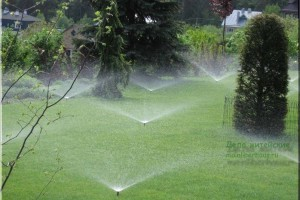 Системы автоматического полива для газонов