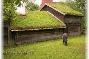 Живая травяная крыша из дёрна